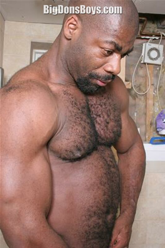 Hairy muscles gay